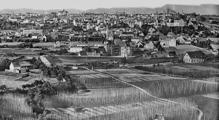 Saaz 1900